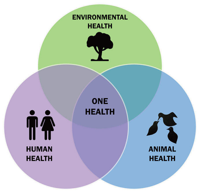 diagram of One Health